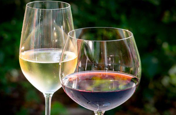 fin de semana con cata de vinos